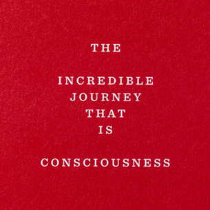 The Incredible Journey that is Consciousness by Alex Fuller & Gabe Usadel