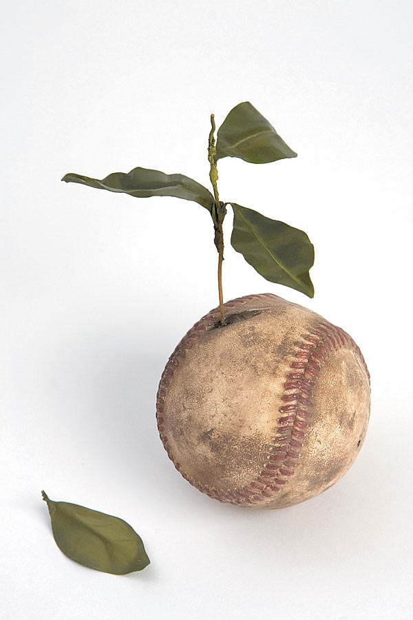 Ali Bailey, Baseball Plant