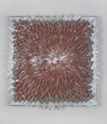 Siobhan Liddell, Untitled