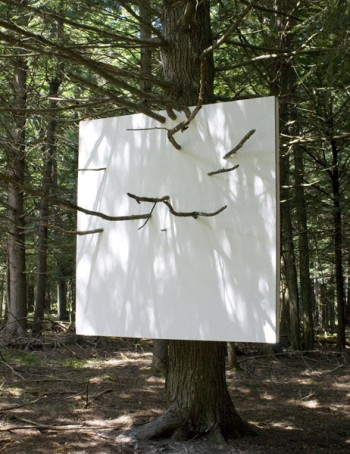 Letha Wilson, Hanging Wall in Hemlock Tree