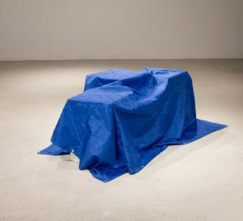 Frances Trombly, All Purpose Tarp