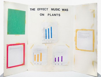 Carson Fisk-Vittori, Music was on Plants